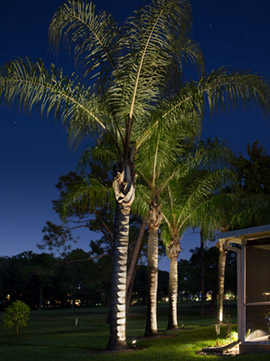 Johnson landscape lighting in jacksonville florida call today to upgrade your current landscape lighting system or to install a new system mozeypictures Choice Image
